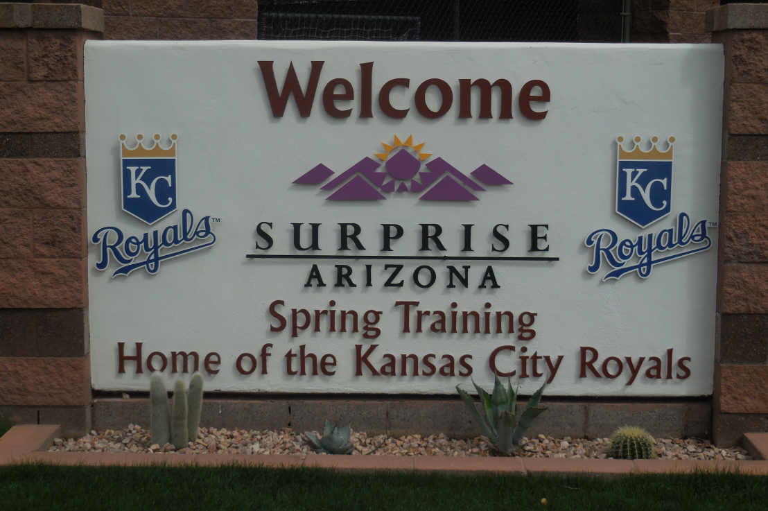 Bizarre Happenings in Spring Training